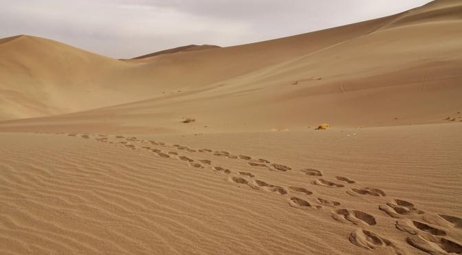 I Am The Silk Road